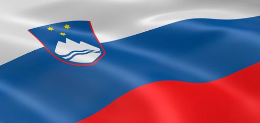 Entsorgungsmarkt Slowenien - Kampf gegen die Krise