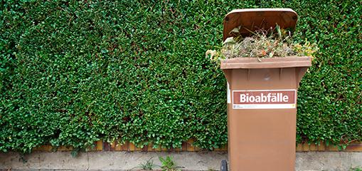 Destatis: Haushaltsabfall-Aufkommen 2013 - Nachholbedarf bei Bioabfällen
