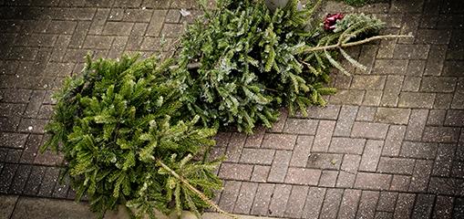 ALBA Braunschweig im Porträt - Abfallmanagement im Winter
